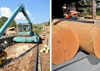 Rabotage et traitement du bois